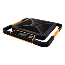 S250 Digital Postal Scale